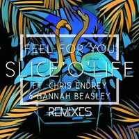 Feel for You — Chris Endrey, Hannah Beasley, Slice'O'Life