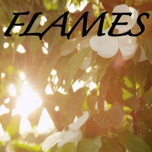 2018 Dj Moodz - Flames / Tribute to David Guetta and Sia