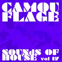 Camouflage Sounds of House, Vol.17 — сборник