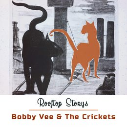 Rooftop Storys — Bobby Vee & The Crickets
