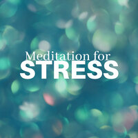 2 Hours Meditation for Stress — Music For The Soul