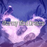 Stormy Mind Dreams — Thunderstorms
