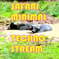 Safari Minimal Techno Stream — сборник