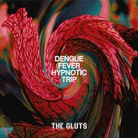 Dengue Fever Hypnotic Trip — The Gluts
