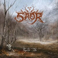 Forgotten Paths — Saor