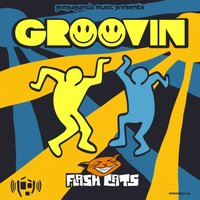 GROOVIN — FLASH CATS
