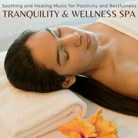 Tranquility & Wellness Spa - Soothing And Healing Music For Positivity And Restfulness — сборник