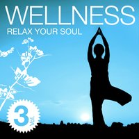 Wellness - Relax Your Soul Vol. 3 — сборник