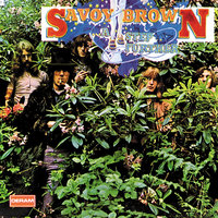 A Step Further — Savoy Brown