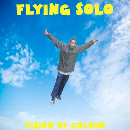 Flying Solo — Vision Of Colour
