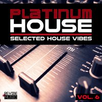 Platinum House - Selected House Vibes, Vol. 6 — сборник