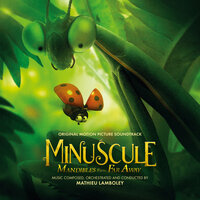 Minuscule: Mandibles from Far Away — Mathieu Lamboley, Orchestre national d'Île-de-France