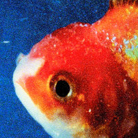 Big Fish Theory — Vince Staples