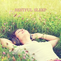 Restful Sleep — Nature Sounds, Thunderstorms & Rain Sounds