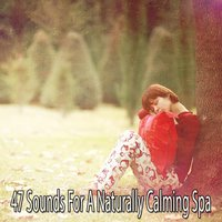 47 Sounds For A Naturally Calming Spa — Spa