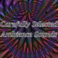 Carefully Selected Ambience Sounds — Ambient Forest, Ambient Rain, Ambiente