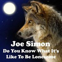 Do You Know What It's Like to Be Lonesome — Joe Simon