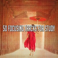 50 Focusing Tracks for Study — Relaxing Mindfulness Meditation Relaxation Maestro