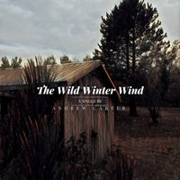 The Wild Winter Wind — Andrew Carter