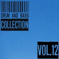 Drum and Bass Collection, Vol. 12 — сборник