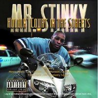 Holdin Court in the Streets — Mrstinky