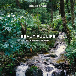 Beautiful Life — Richie Spice, Kathryn Aria