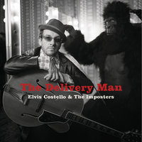 The Delivery Man — Elvis Costello