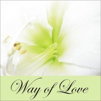 Way of Love — Various Artists & Solisten Der Sdr Big Band