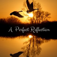 A Perfect Reflection — Yoga Sounds