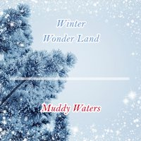 Winter Wonder Land — Muddy Waters