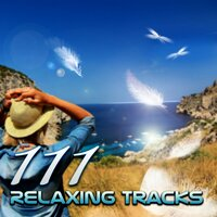 111 Relaxing Tracks: Spa, Massage, Relaxation, Meditation, Reiki, Yoga, Sleep Therapy, Relax Sessions, Natural White Noise — сборник
