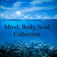 Mind, Body, Soul Collection - 20 Powerful Rain and Water Relaxation Melodies to Relieve Stress and Anxiety, Engage Deep Focus and Concentration, and Help with Meditation and a Deeper, Better Sleep — Deep Sleep Relaxation, Sleep Sounds of Nature, Sleep Sound Research