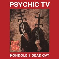 Kondole / Dead Cat — Psychic TV
