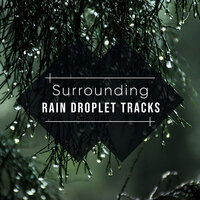 #20 Surrounding Rain Droplet Tracks — Ambient Forest, Rain Sounds ACE, Elements of Nature, Ambient Forest, Elements of Nature, Rain Sounds ACE