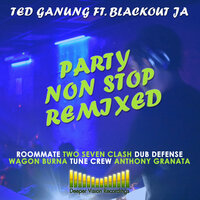 Party Non Stop Remixed — Ted Ganung feat. Blackout JA