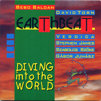 Diving Into the World — Bebo Baldan & David Torn, David Torn, Bebo Baldan