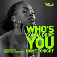 Who's Gonna Drive You Home Tonight (25 Deep-House Weekenders) Vol. 6 — сборник