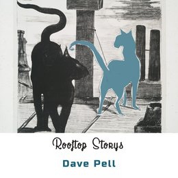 Rooftop Storys — Dave Pell