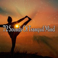 72 Sounds Of Tranquil Mind — Massage