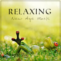 Relaxing New Age Music – Meditation, Yoga, Feel Your Energy Life by Listening to the Nature Ocean Waves — Absolutely Relaxing Oasis