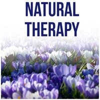 Natural Therapy - Sound Therapy, New Age, Healing Through Sound and Touch, Rain Sounds for Massage, Yoga Poses, Stress Relief, Harmony of Senses, Meditation Before Sleep — Lovely Nature Music Zone