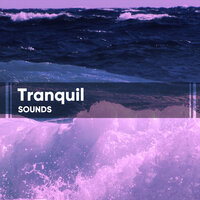 Tranquil Sounds for Sleep — Sleep Tight Sounds