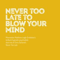 Never Too Late to Blow Your Mind — Chris Garland, Matthew Leigh Embleton, Hong Guo