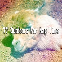 77 Outdoors for Nap Time — Baby Sleep