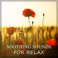 Soothing Sounds for Relax – Sounds of Nature & Ocean Waves for Relaxation, Healing New Age Music, Total Rest — Relax Time Universe