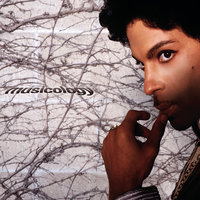 Musicology — Prince