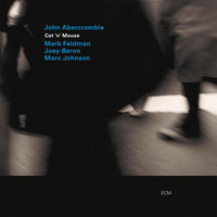Cat 'N' Mouse — John Abercrombie, Mark Feldman, Joey Baron, Marc Johnson
