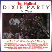 The Hottest Dixie Party in Town: What a Wonderful World — сборник