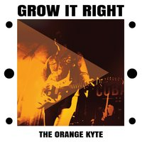 Grow It Right — The Orange Kyte