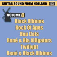 Guitar Sound from Holland Vol. 8 — сборник
